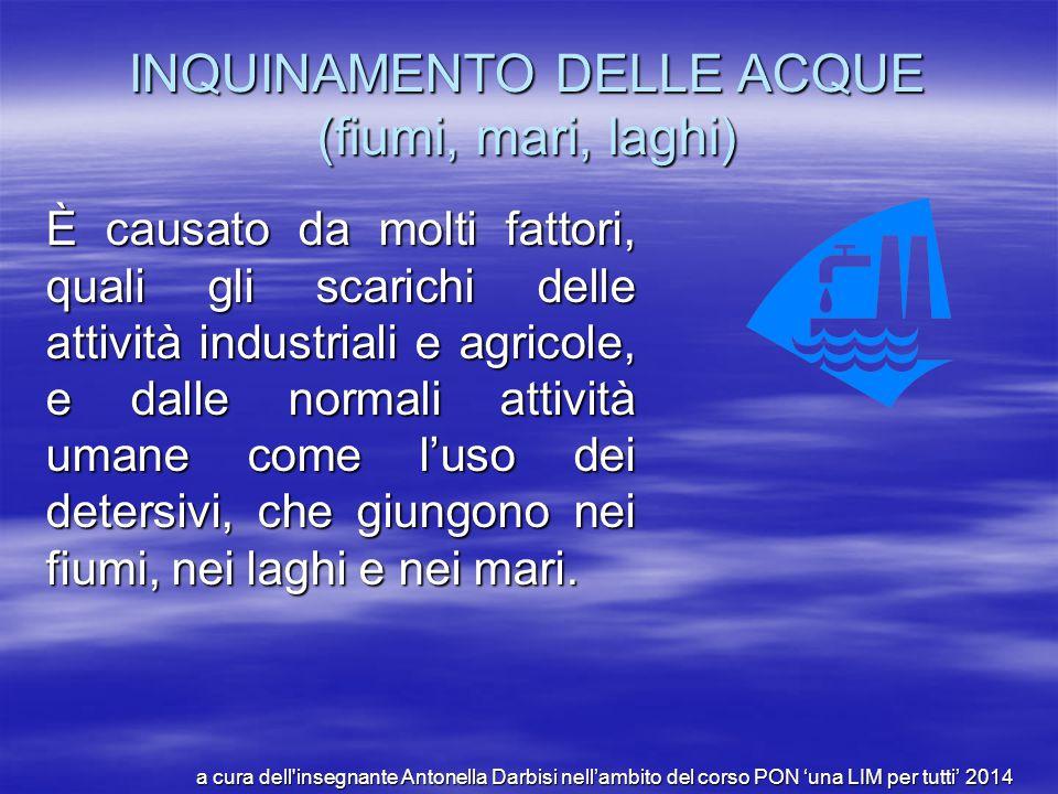 INQUINAMENTO DELLE ACQUE (fiumi, mari, laghi)
