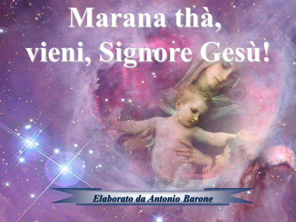 Sì, Amen! Marana thà, vieni, Signore Gesù!