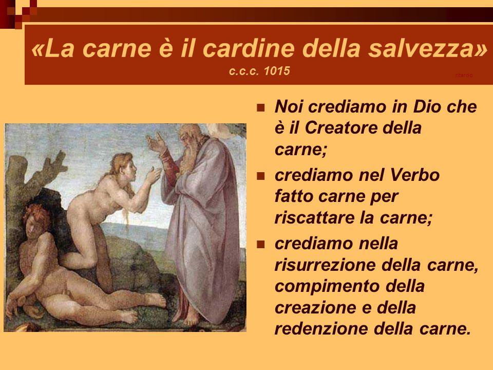 «La carne è il cardine della salvezza» c.c.c. 1015