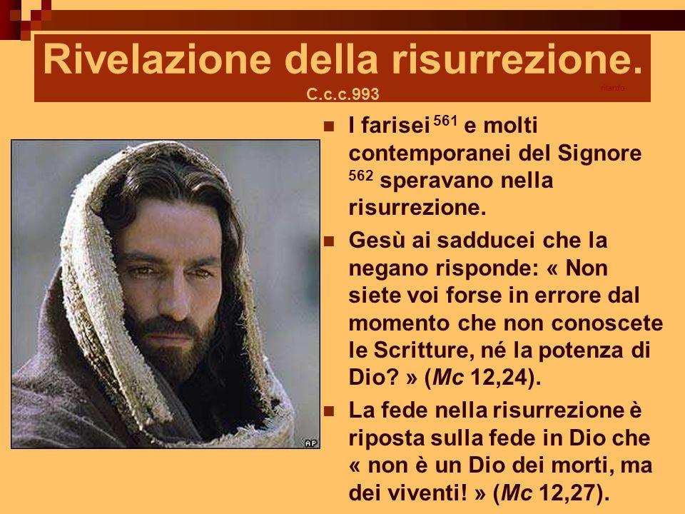 Rivelazione della risurrezione. C.c.c.993