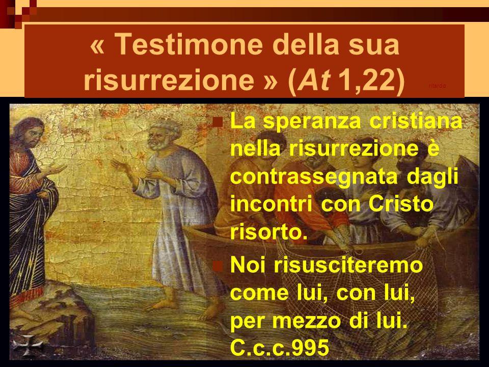 « Testimone della sua risurrezione » (At 1,22)