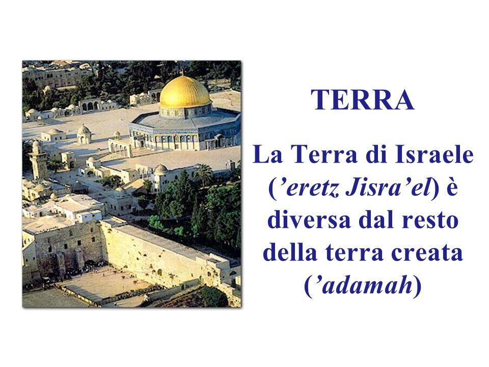 TERRA La Terra di Israele ('eretz Jisra'el) è diversa dal resto della terra creata ('adamah)