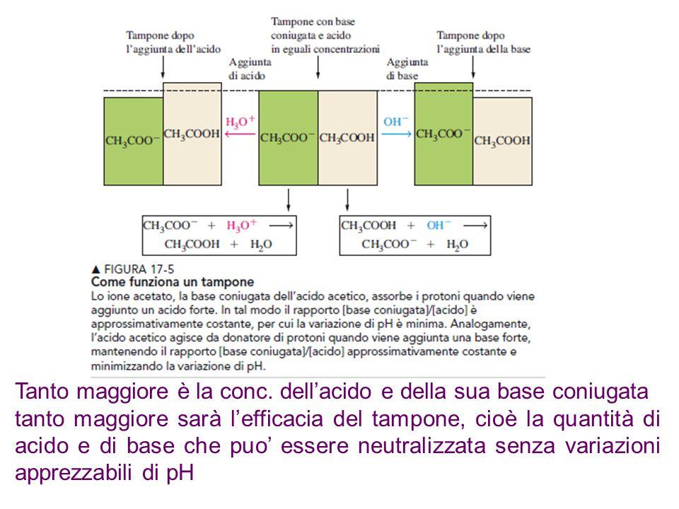 Tanto maggiore è la conc. dell'acido e della sua base coniugata