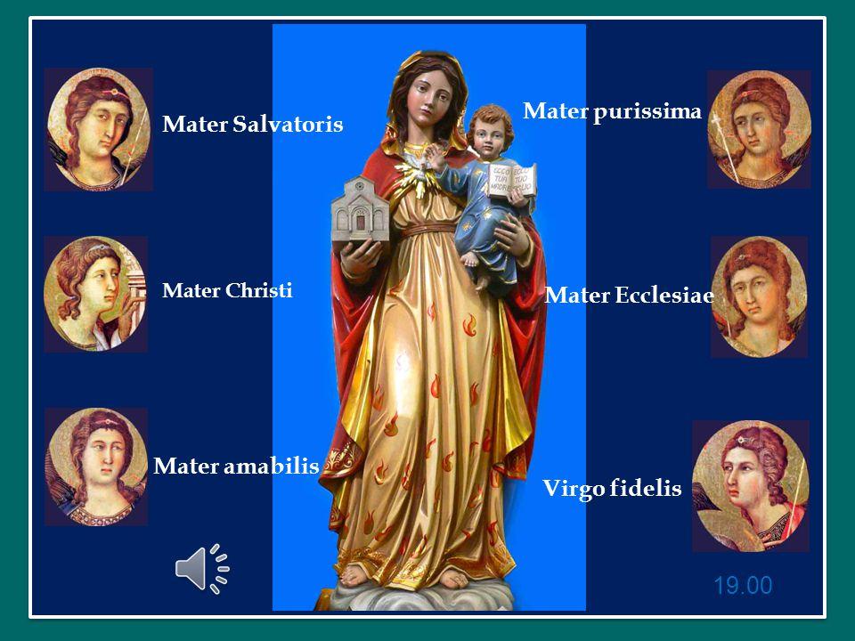 Mater purissima Mater Salvatoris Mater Ecclesiae Mater amabilis