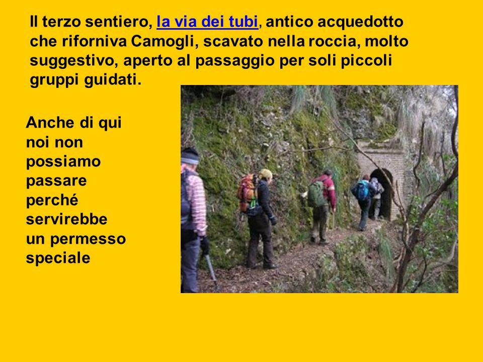 Il terzo sentiero, la via dei tubi, antico acquedotto che riforniva Camogli, scavato nella roccia, molto suggestivo, aperto al passaggio per soli piccoli gruppi guidati.
