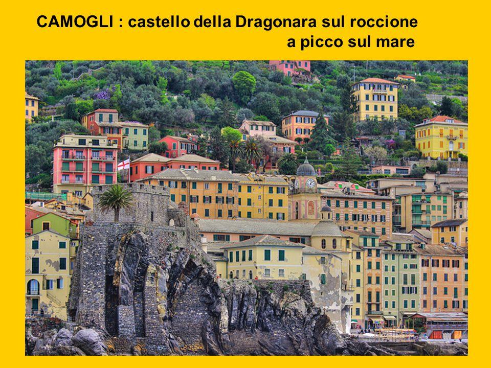 CAMOGLI : castello della Dragonara sul roccione