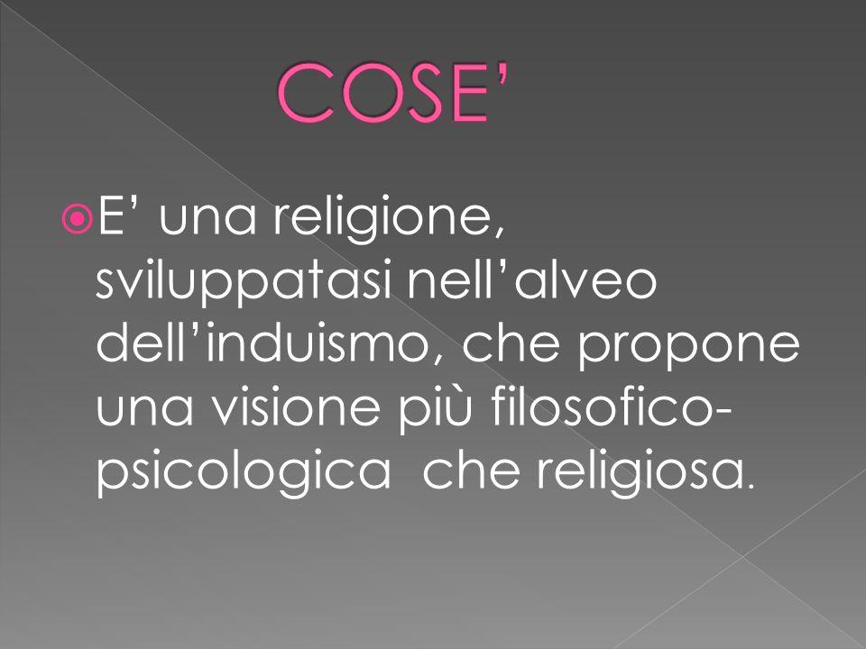 COSE' E' una religione, sviluppatasi nell'alveo dell'induismo, che propone una visione più filosofico-psicologica che religiosa.