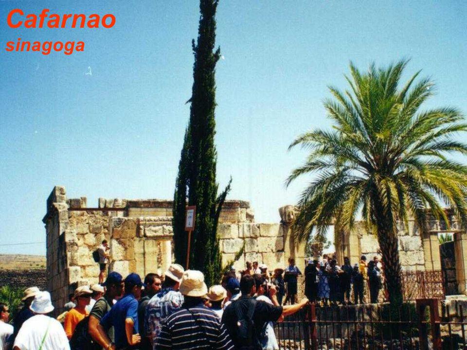 Cafarnao sinagoga