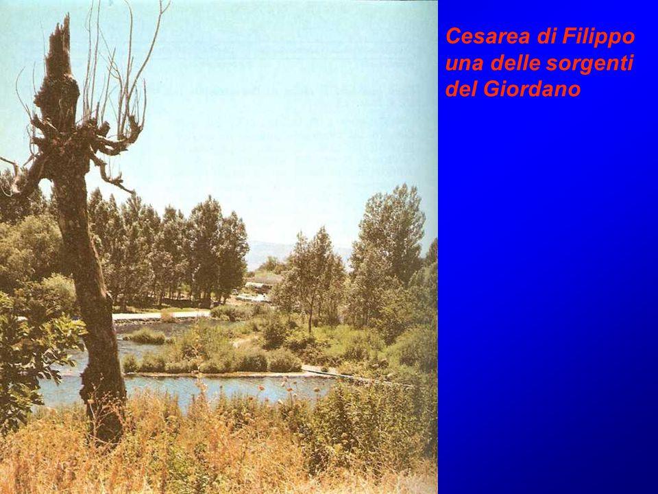 Cesarea di Filippo una delle sorgenti del Giordano