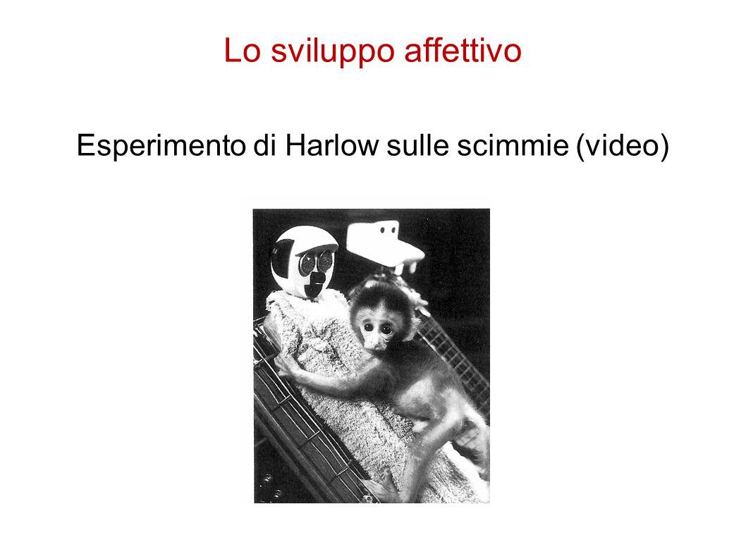 Esperimento di Harlow sulle scimmie (video)