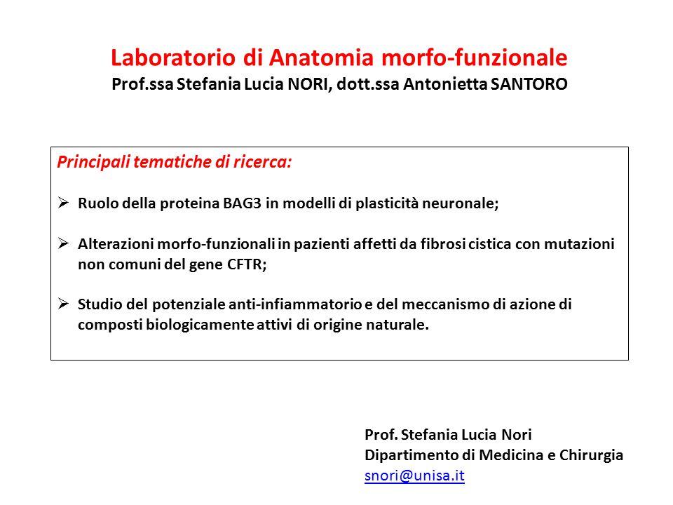 Laboratorio di Anatomia morfo-funzionale