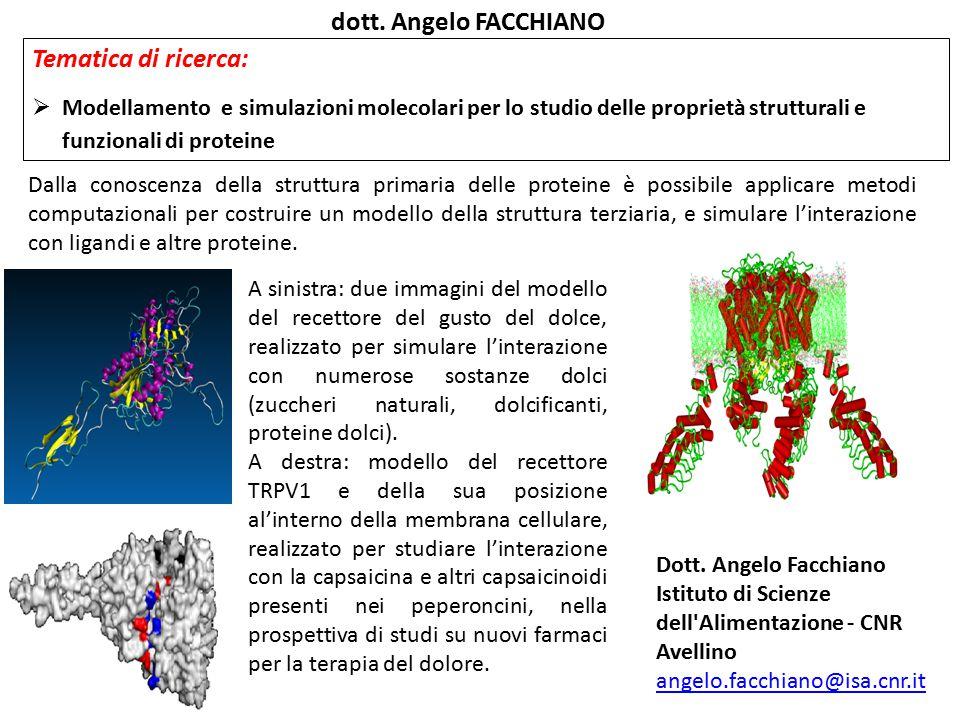 dott. Angelo FACCHIANO Tematica di ricerca: