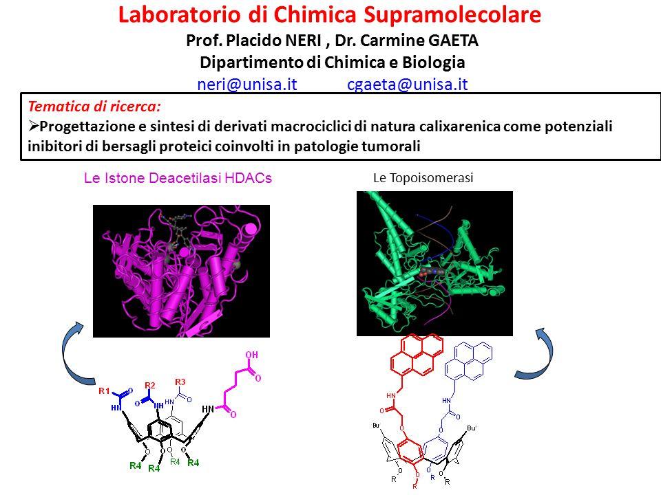 Laboratorio di Chimica Supramolecolare
