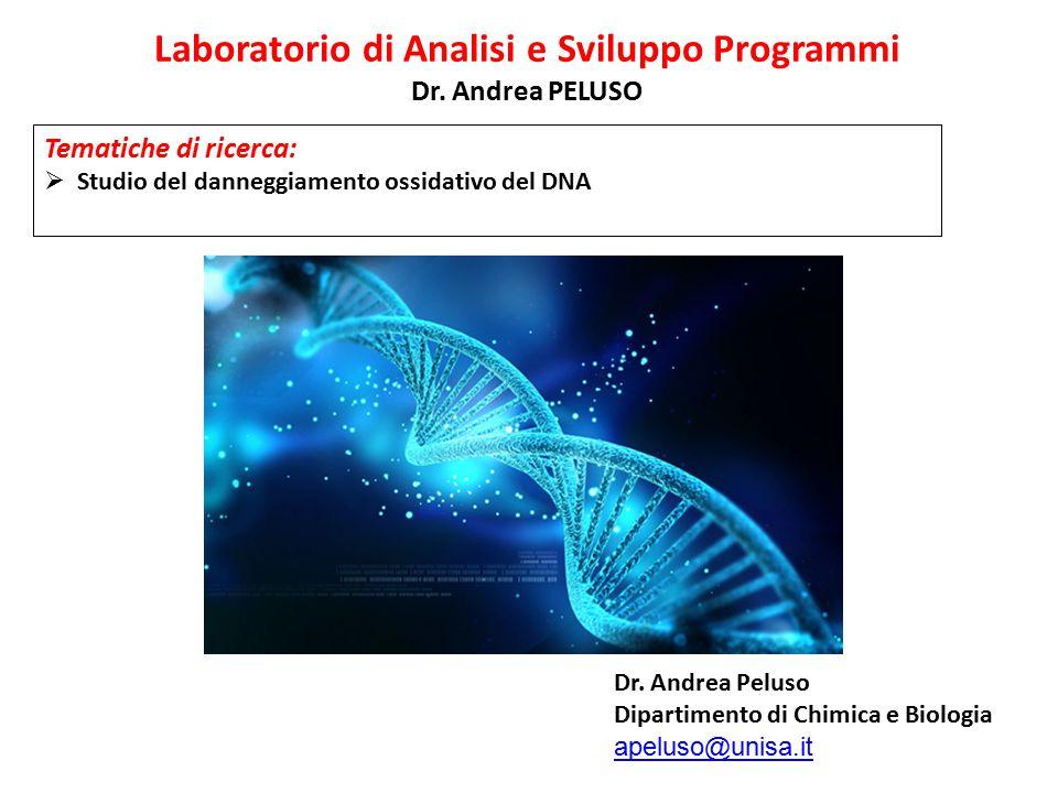 Laboratorio di Analisi e Sviluppo Programmi