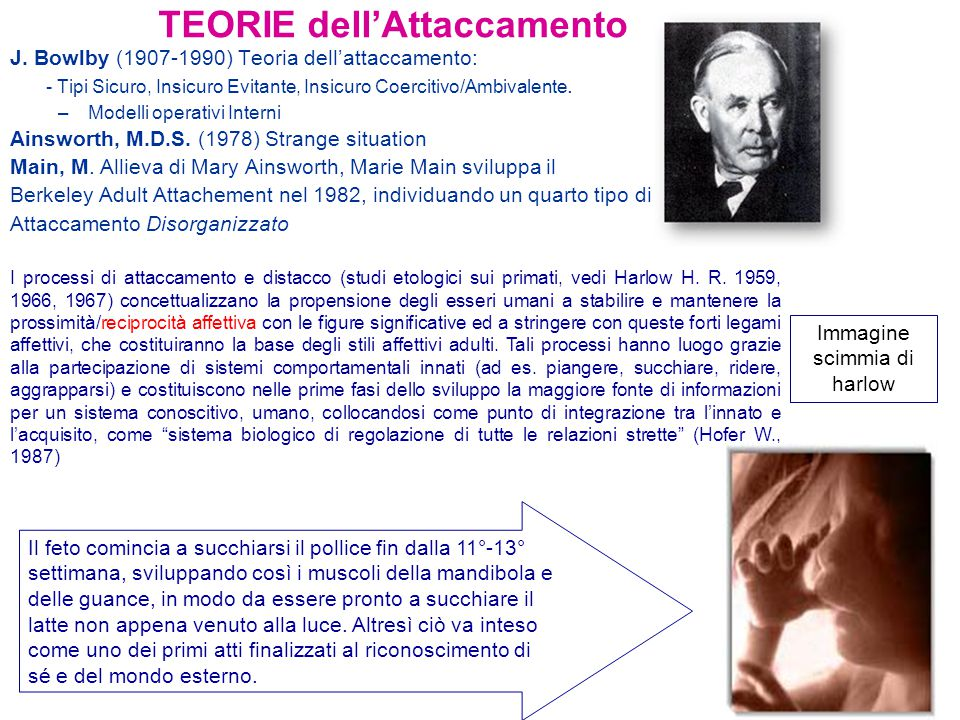 TEORIE dell'Attaccamento