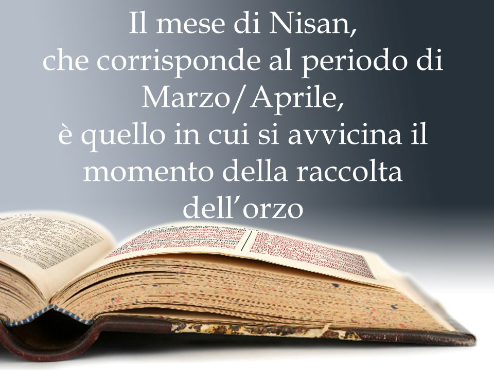 Il mese di Nisan, che corrisponde al periodo di Marzo/Aprile, è quello in cui si avvicina il momento della raccolta dell'orzo