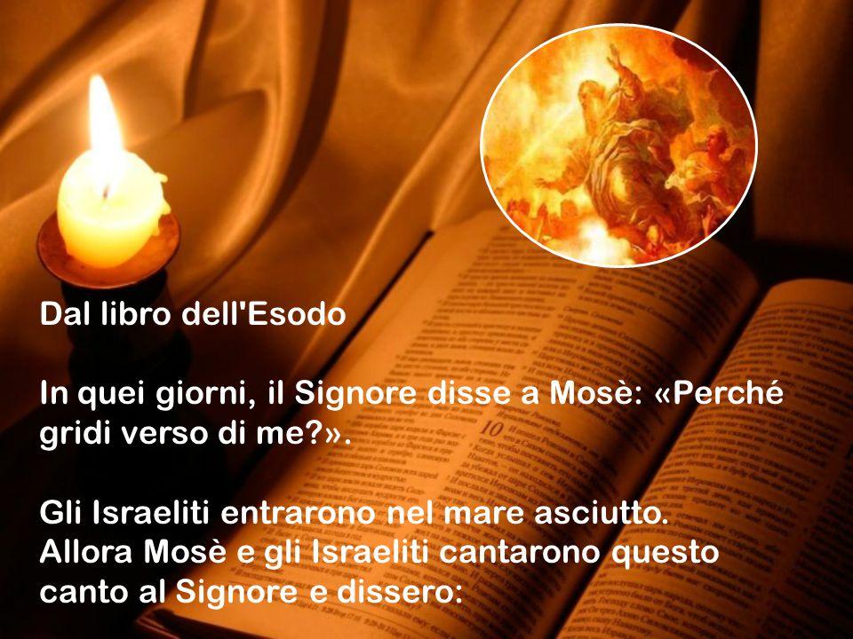 Dal libro dell Esodo In quei giorni, il Signore disse a Mosè: «Perché gridi verso di me ». Gli Israeliti entrarono nel mare asciutto.