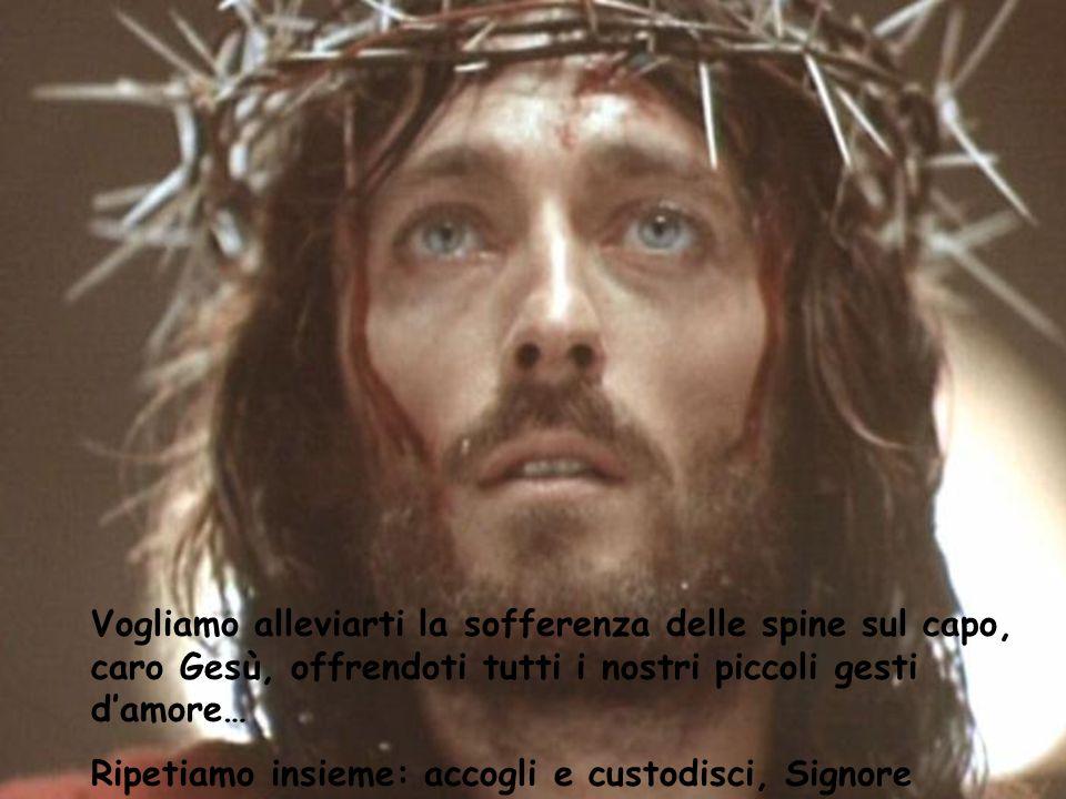 Vogliamo alleviarti la sofferenza delle spine sul capo, caro Gesù, offrendoti tutti i nostri piccoli gesti d'amore…
