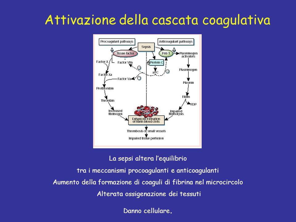 Attivazione della cascata coagulativa