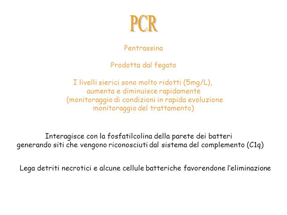 PCR Pentrassina Prodotta dal fegato