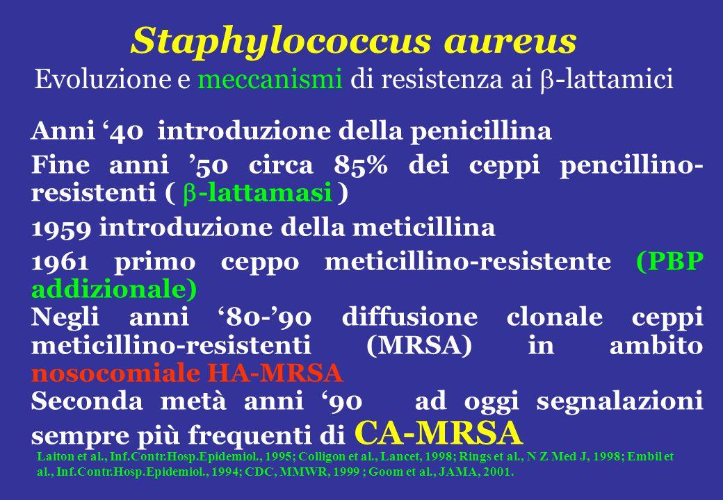 Staphylococcus aureus Evoluzione e meccanismi di resistenza ai -lattamici