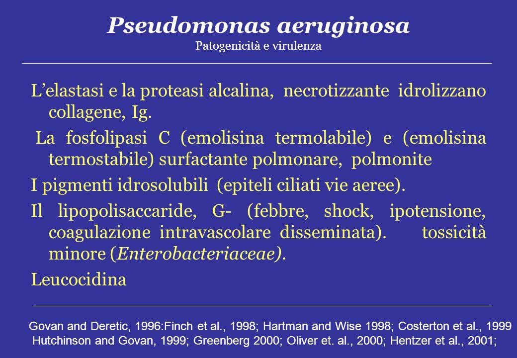 Pseudomonas aeruginosa Patogenicità e virulenza