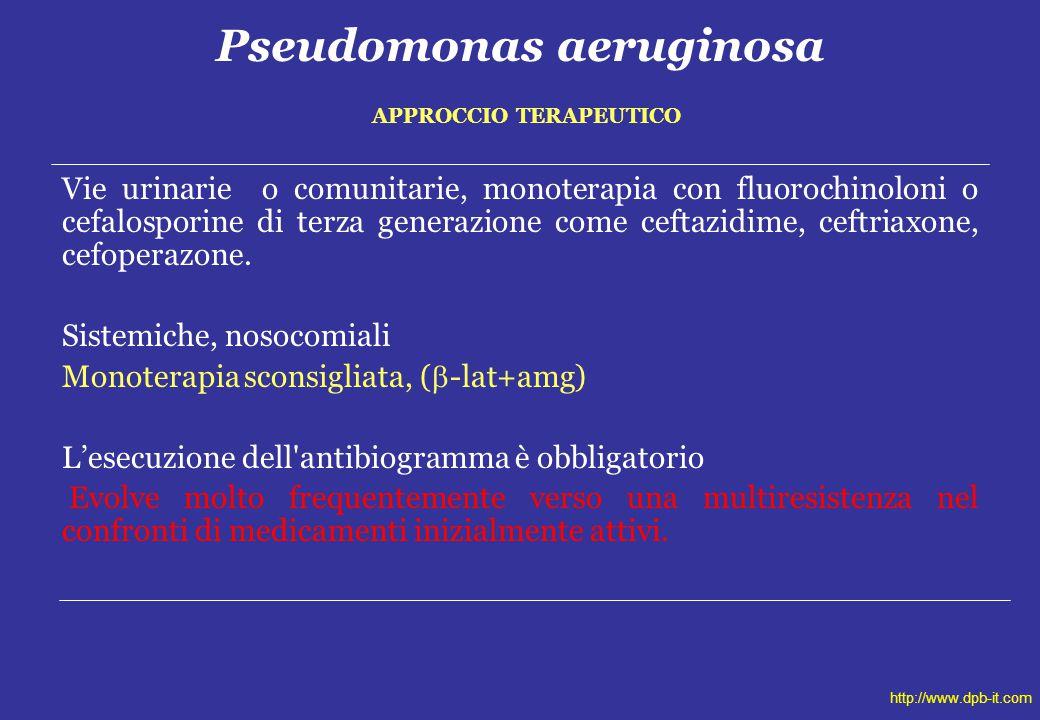 Pseudomonas aeruginosa APPROCCIO TERAPEUTICO