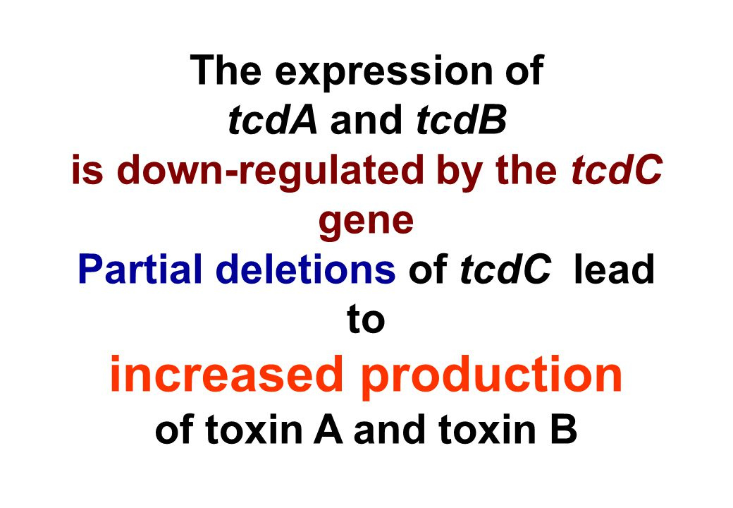 is down-regulated by the tcdC gene Partial deletions of tcdC lead to