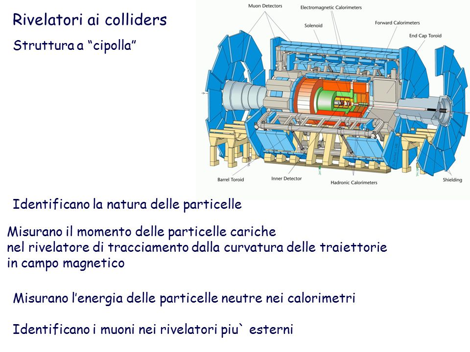 Rivelatori ai colliders