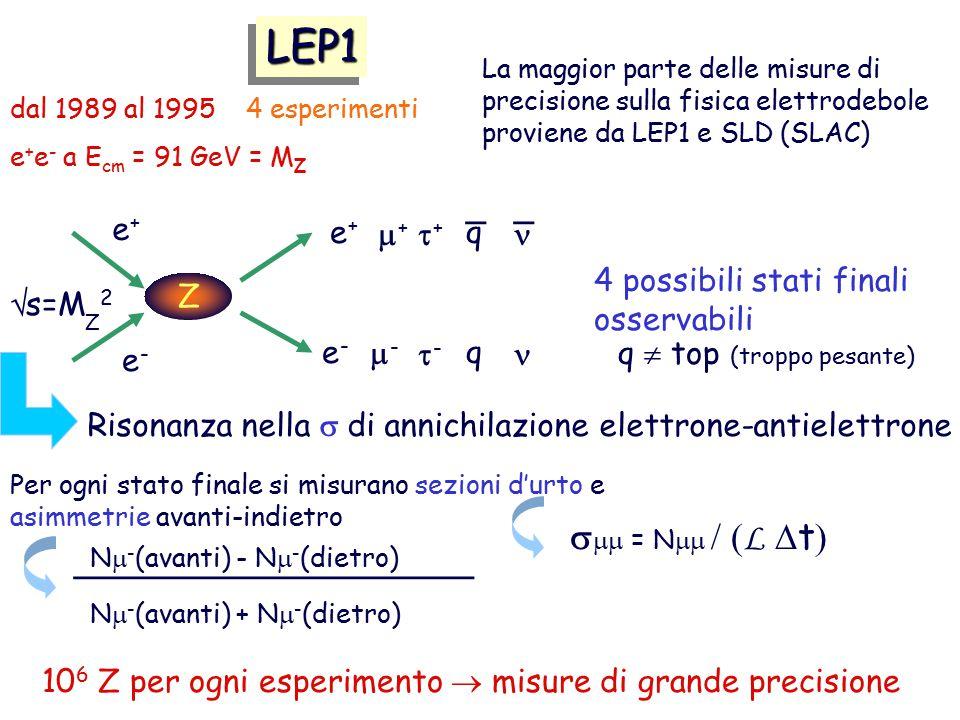 LEP1 smm = Nmm / (L Dt) _ n _ e+ e+ m+ t+ q 4 possibili stati finali