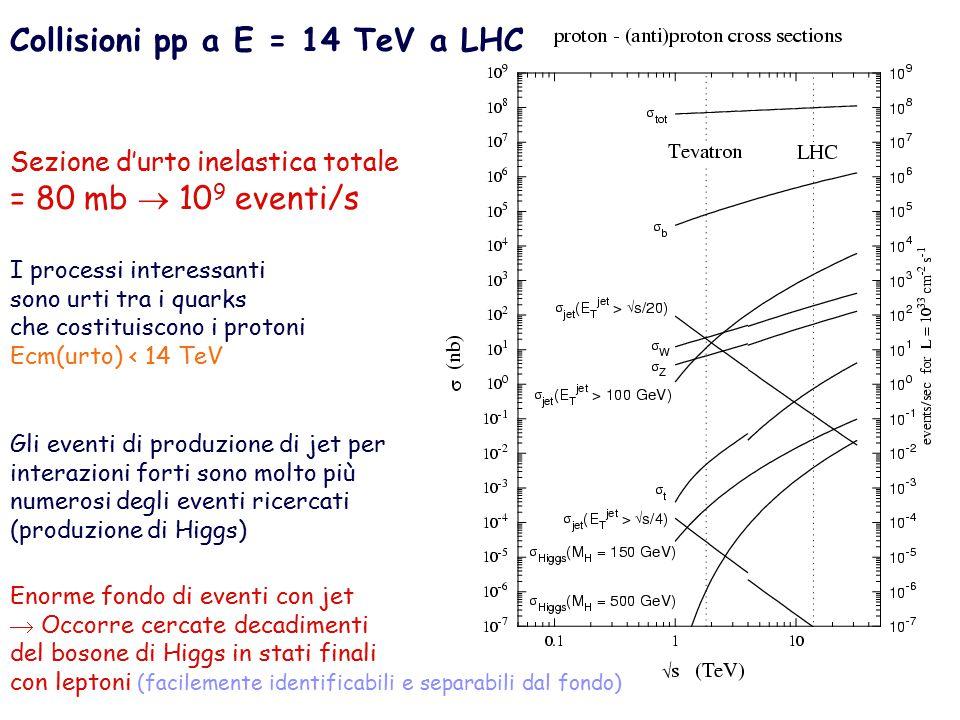 Collisioni pp a E = 14 TeV a LHC