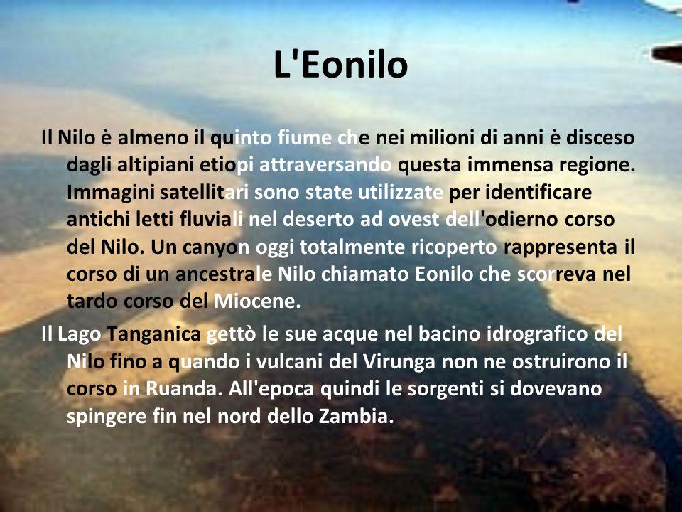 L Eonilo