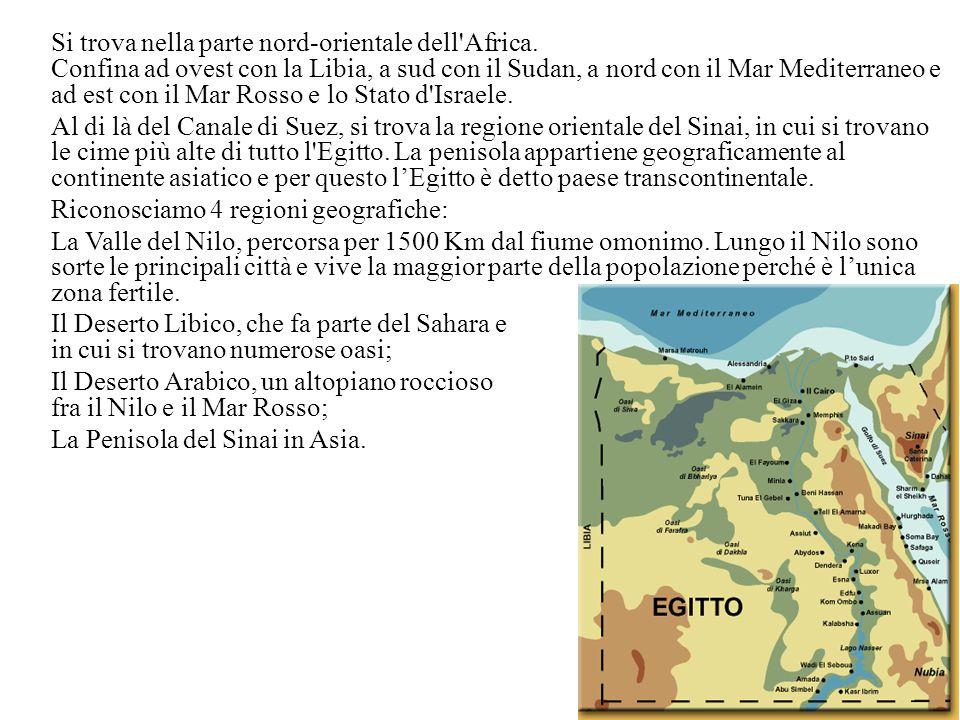 Si trova nella parte nord-orientale dell Africa