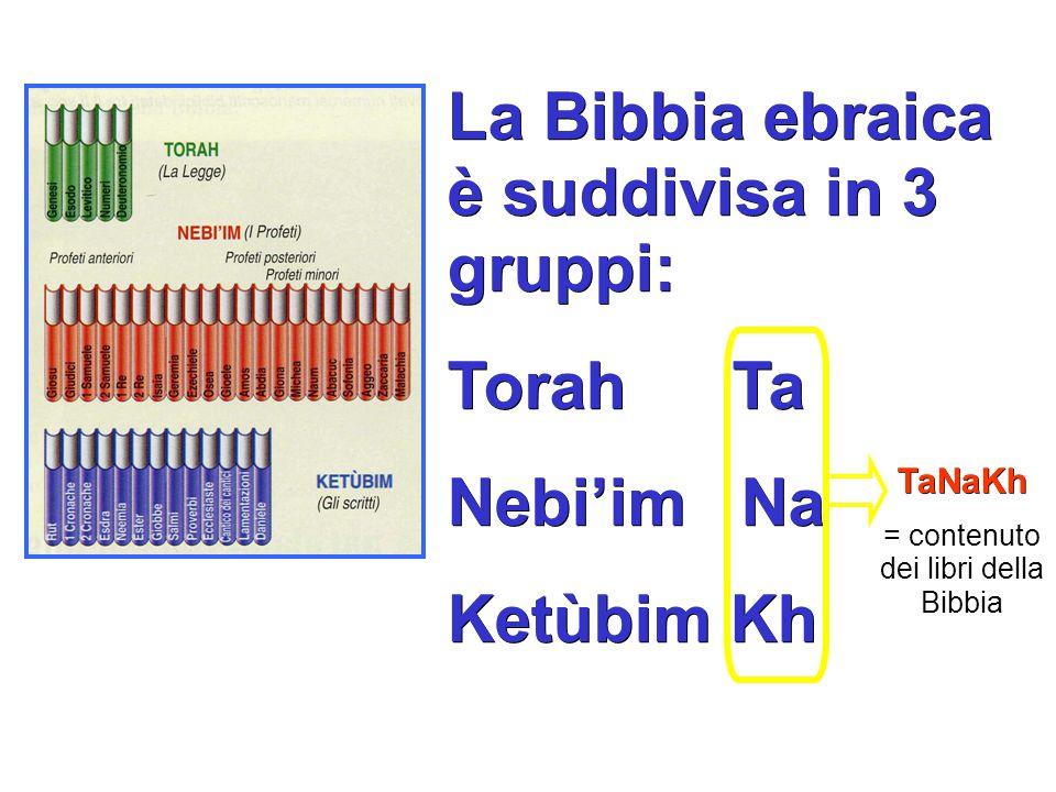 = contenuto dei libri della Bibbia
