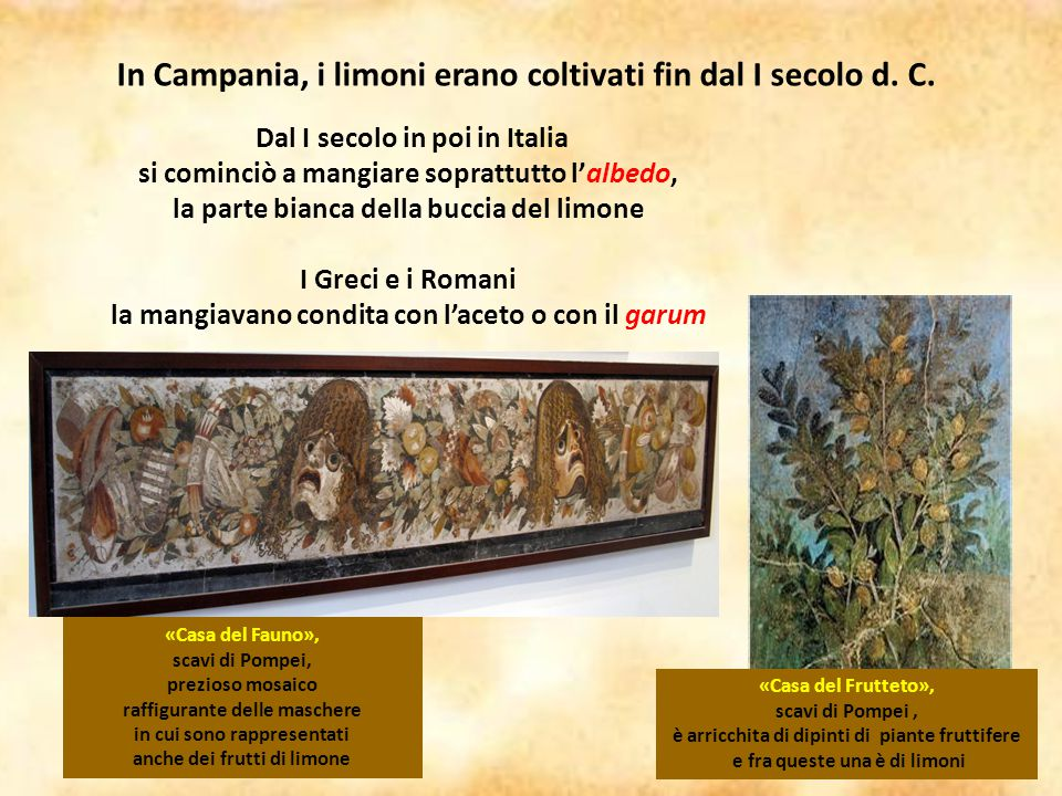 In Campania, i limoni erano coltivati fin dal I secolo d. C.