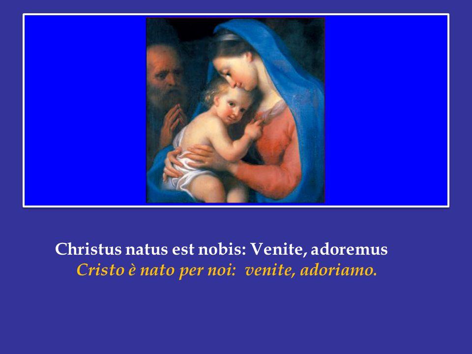 Christus natus est nobis: Venite, adoremus Cristo è nato per noi: venite, adoriamo.