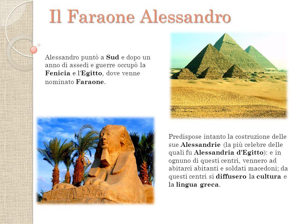 Il Faraone Alessandro Alessandro puntò a Sud e dopo un anno di assedi e guerre occupò la Fenicia e l Egitto, dove venne nominato Faraone.