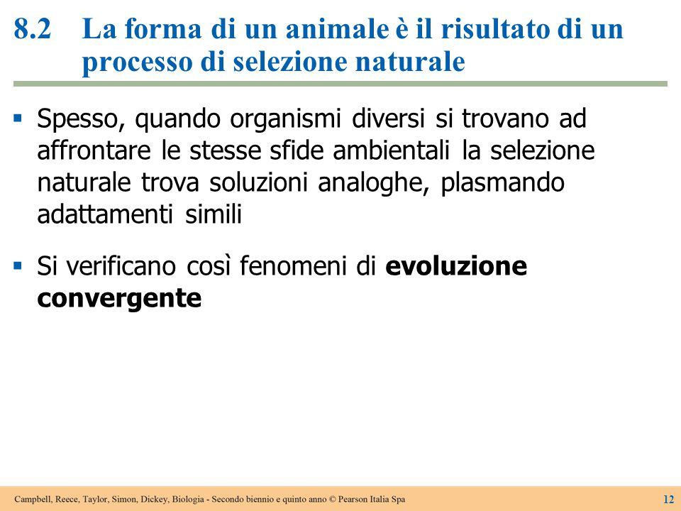 8.2 La forma di un animale è il risultato di un processo di selezione naturale