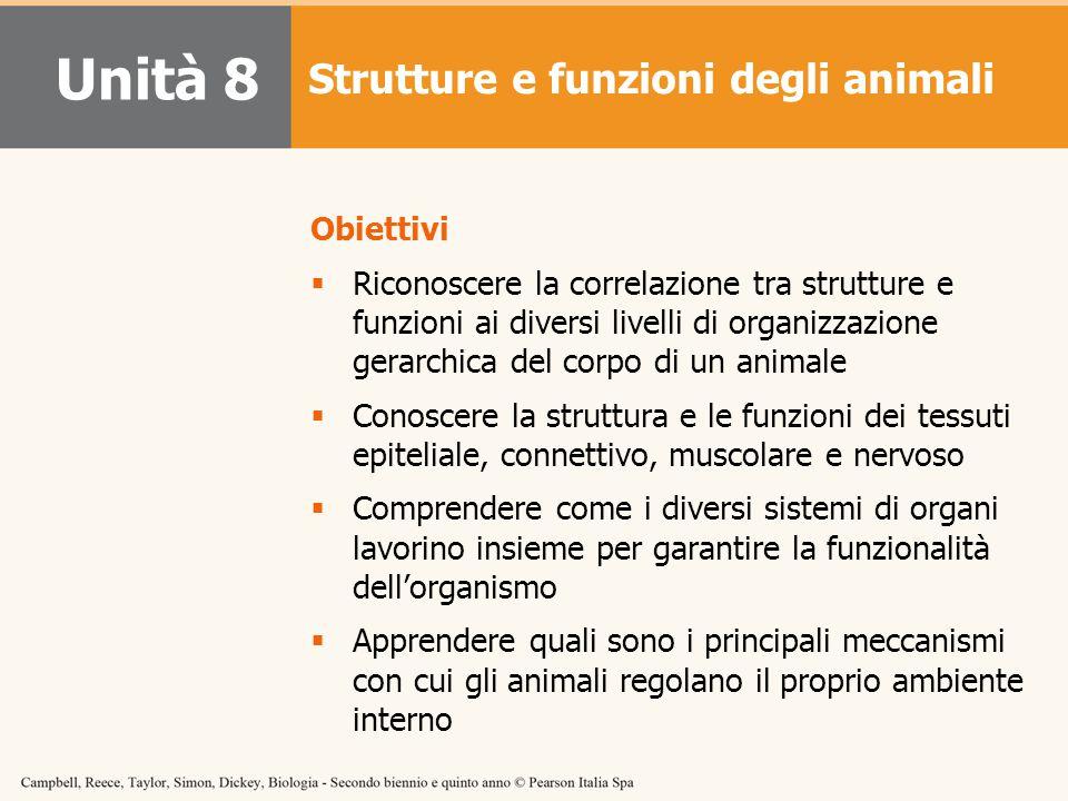 Unità 8 Strutture e funzioni degli animali Obiettivi