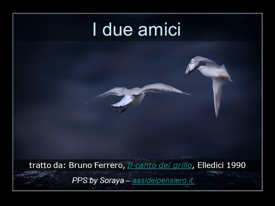 I due amici tratto da: Bruno Ferrero, Il canto del grillo, Elledici 1990.