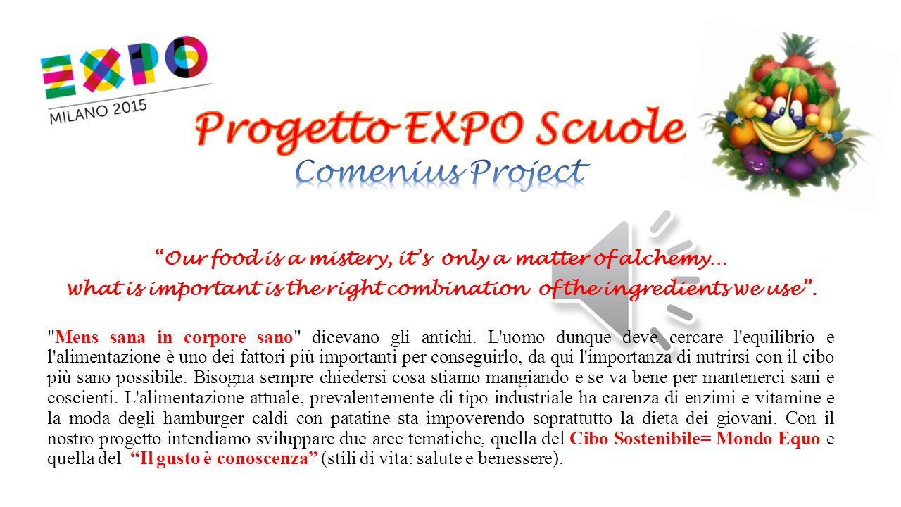 Progetto EXPO Scuole Comenius Project