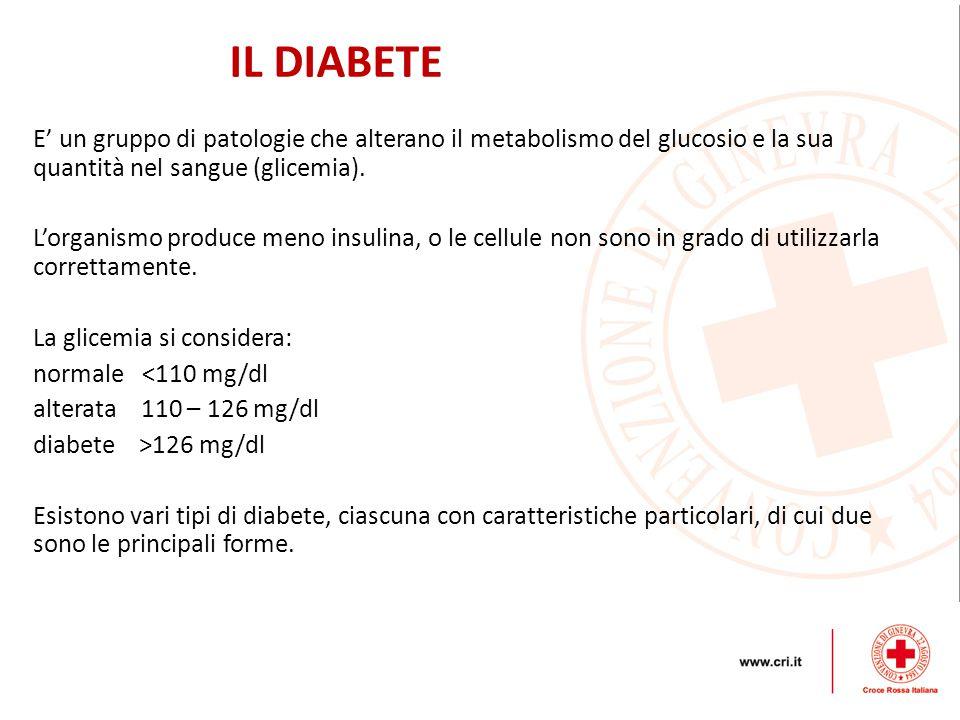 IL DIABETE E' un gruppo di patologie che alterano il metabolismo del glucosio e la sua quantità nel sangue (glicemia).