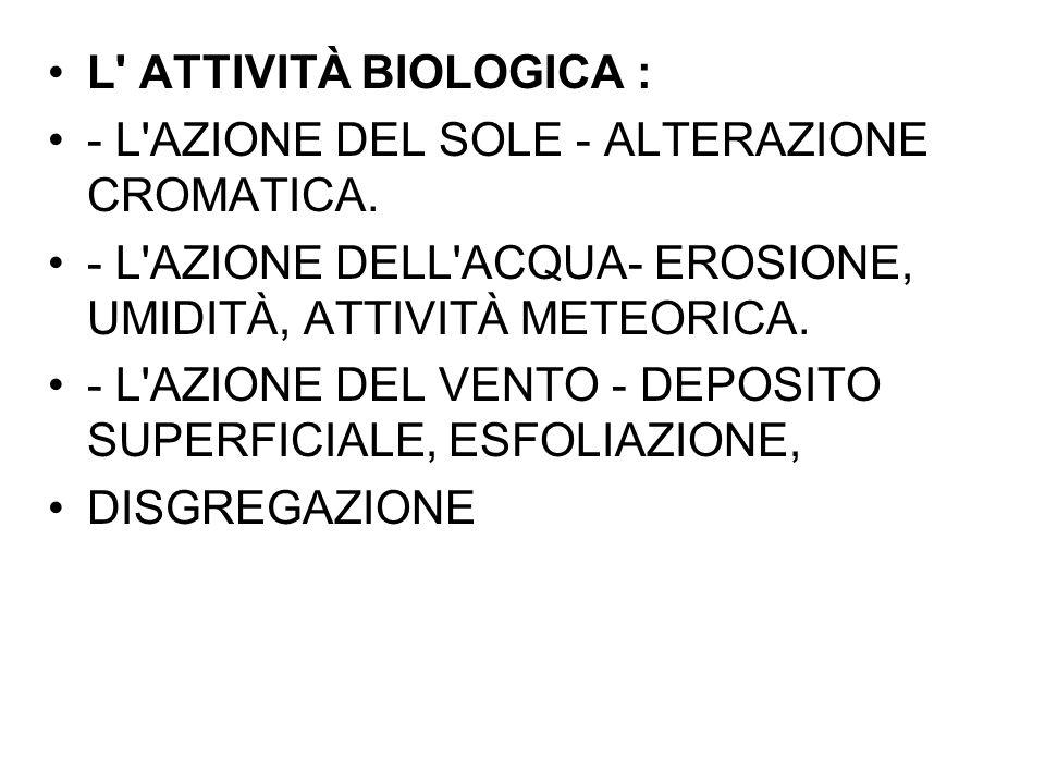 L ATTIVITÀ BIOLOGICA : - L AZIONE DEL SOLE - ALTERAZIONE CROMATICA. - L AZIONE DELL ACQUA- EROSIONE, UMIDITÀ, ATTIVITÀ METEORICA.
