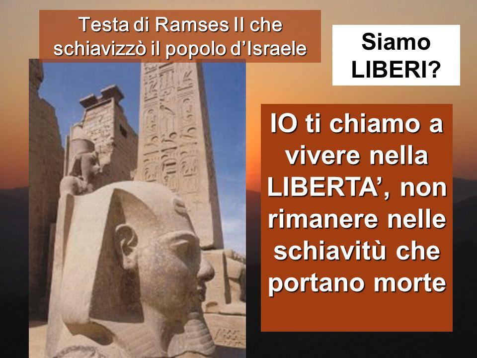 Testa di Ramses II che schiavizzò il popolo d'Israele