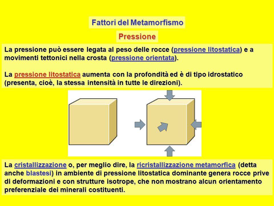 Fattori del Metamorfismo