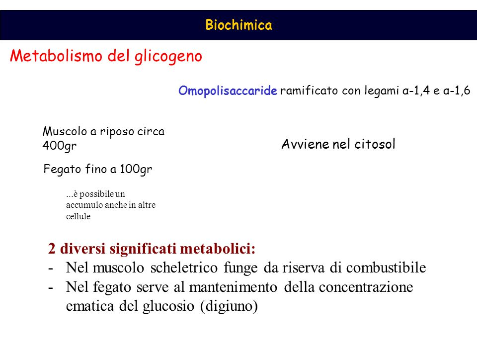 Metabolismo del glicogeno