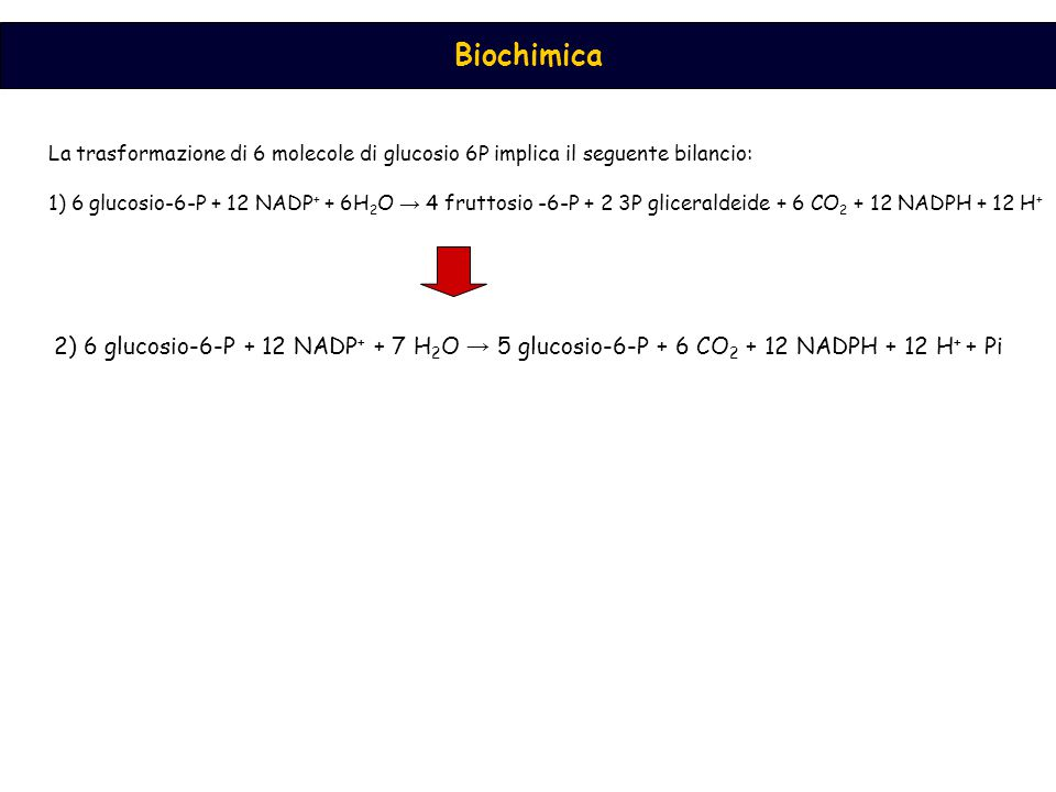 La trasformazione di 6 molecole di glucosio 6P implica il seguente bilancio: