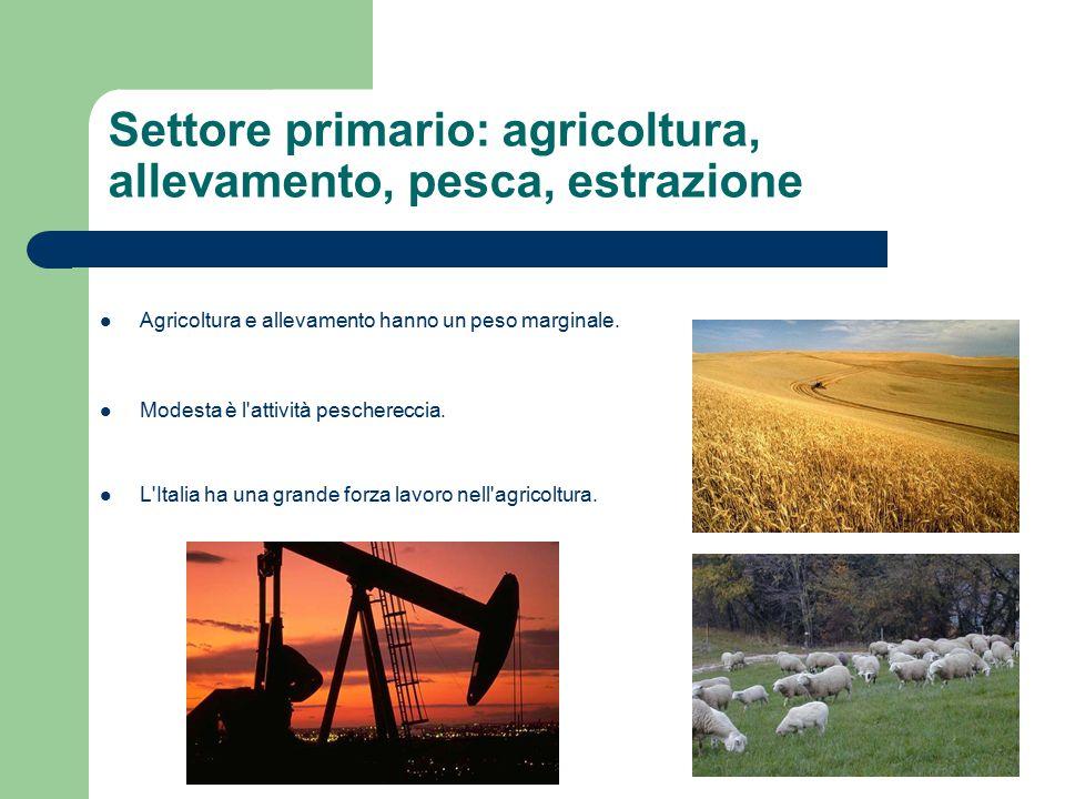 Settore primario: agricoltura, allevamento, pesca, estrazione