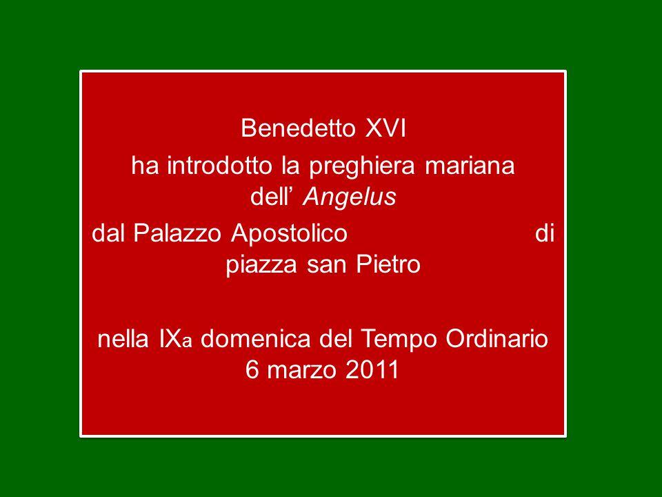 Benedetto XVI ha introdotto la preghiera mariana dell' Angelus dal Palazzo Apostolico di piazza san Pietro nella IXa domenica del Tempo Ordinario 6 marzo 2011