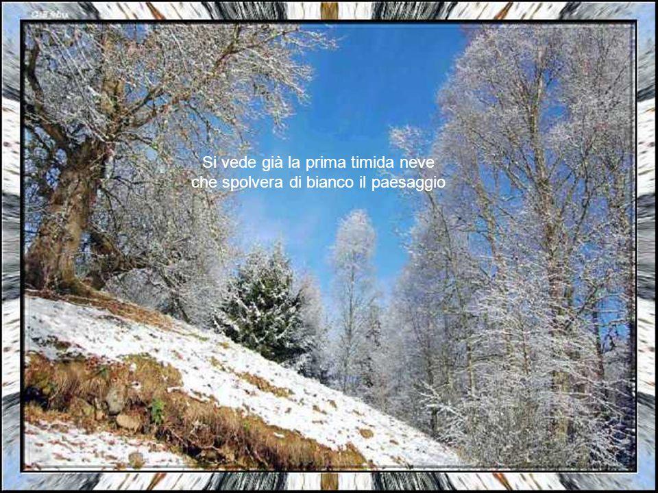 Si vede già la prima timida neve che spolvera di bianco il paesaggio